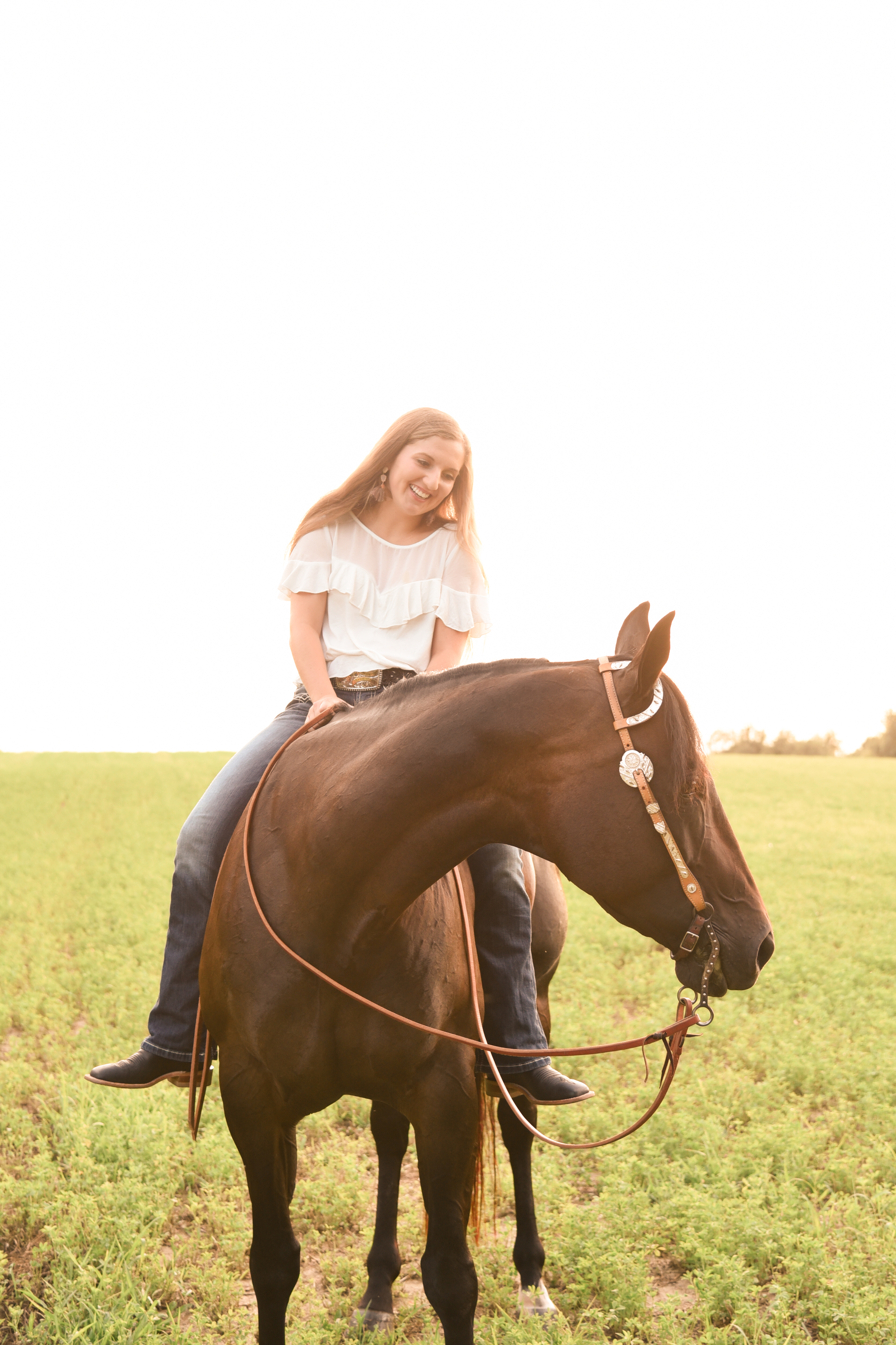 Madison Senior Horse Class Of 2019 Piper View Designs